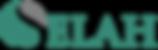 Selah - Logo S.png