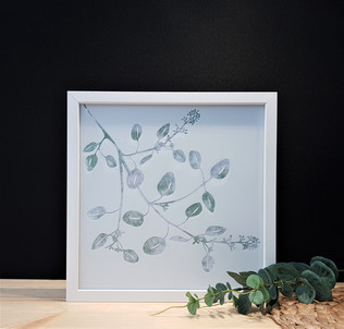 Etched Glass Art