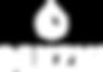 Benzin-logo_full_wht_esp.png
