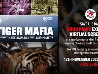 THE TIGER MAFIA ONLINE WORLD PREMIERE AND LIVE Q&A