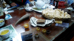 rhino horn products