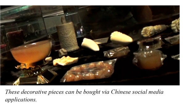 These decorative pieces can be bought via Chinese social media applications.