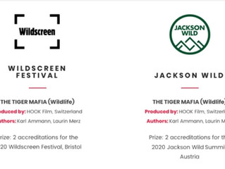 THE TIGER MAFIA - Best Feature Film 2020