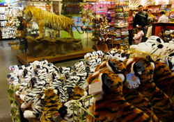 Toy shop also