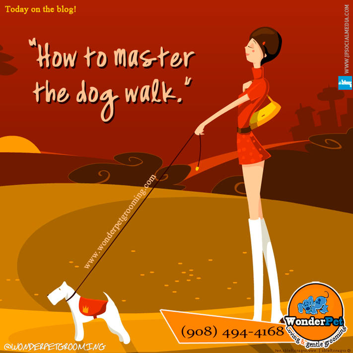 How to master the dog walk.
