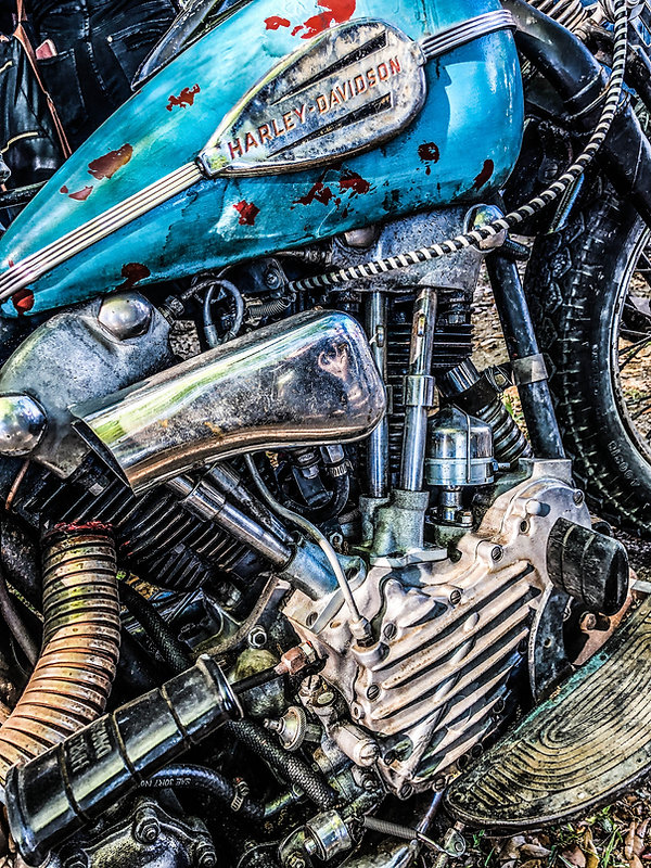 Knucklehead Blues - Photo by Scharf