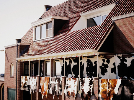 Dans le WaterLand: Volendam, pêche, usine à fromage et bon poisson!