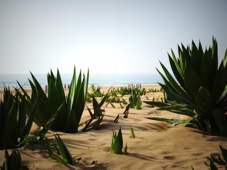 Les plus belles plages autour de Tanger