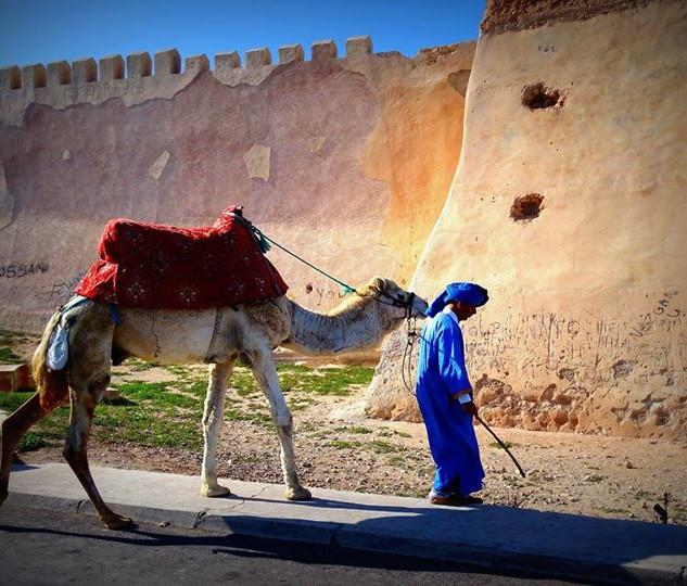 Sur les remparts d'Agadir