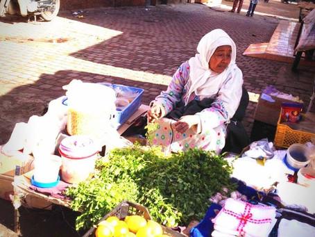 Marrakech, ville la plus touristique du Maroc!