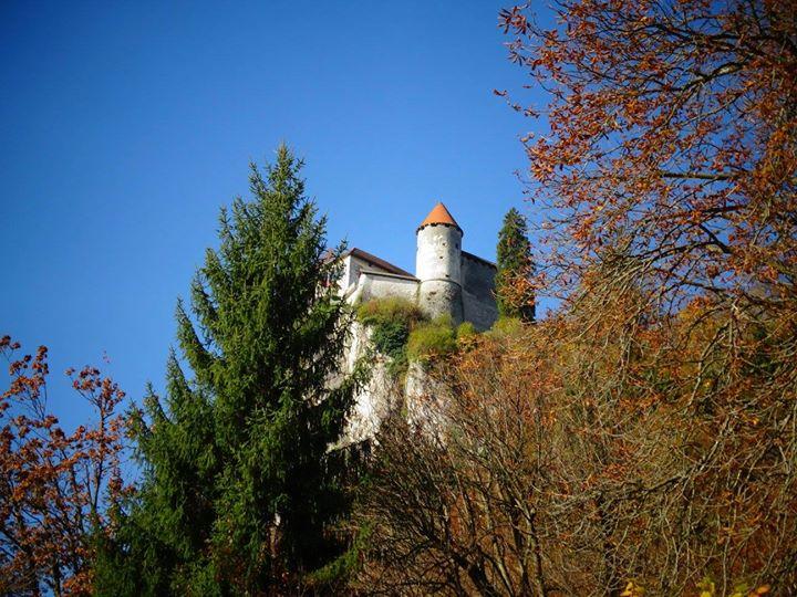 le chateau de Bled, incrusté dans la montagne!