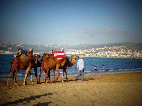 Visite de Tanger, aux portes de l'Afrique!