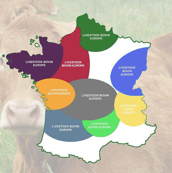 Nos implantations en France.jpg