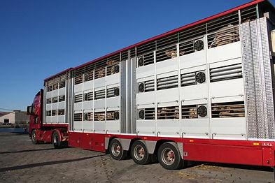 Le transport en camion