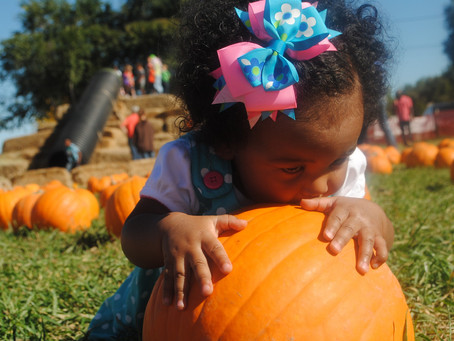 Asthma & Allergy Safety While Tripping To Apple Orchards & Pumpkin Patches!