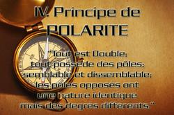Principe de Polarité