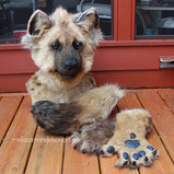 Spotted Hyena partial small.jpg