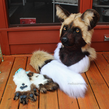 African Wild Dog partial small.jpg