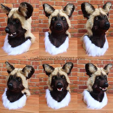 African Wild Dog turnaround small.jpg