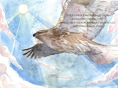 Eastern Buzzard ORIGINAL watercolor