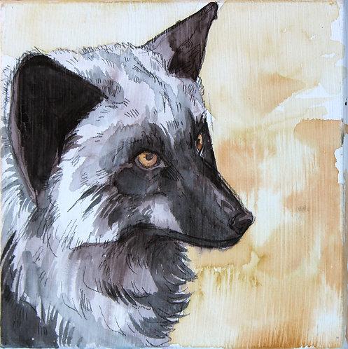 Watercolor painting - Obi