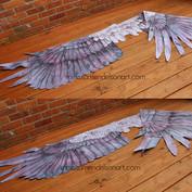 hooded crow wings small.jpg