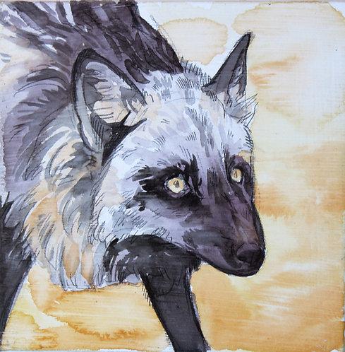 Watercolor painting -Vincent