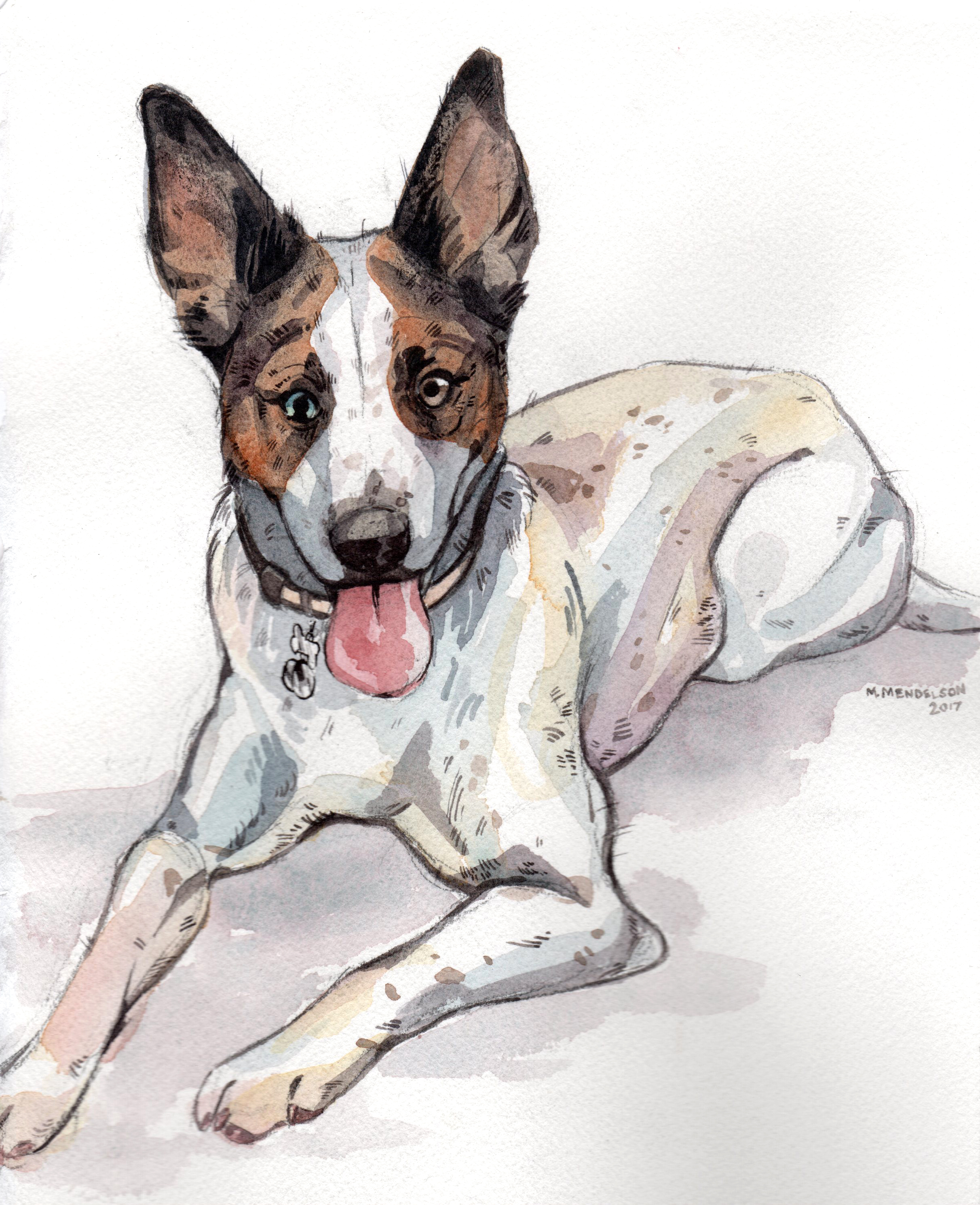 Alex Smith pet portrait