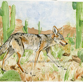 desert coyote small.jpg