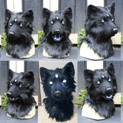 three eyed wolf turnaround small.jpg