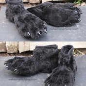 Gray hyena feet small.jpg