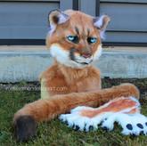 Puma partial small.jpg