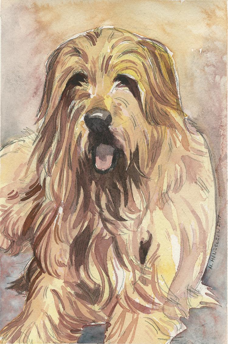 Pet portrait - Annie