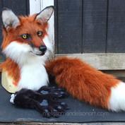 red fox partial small.jpg