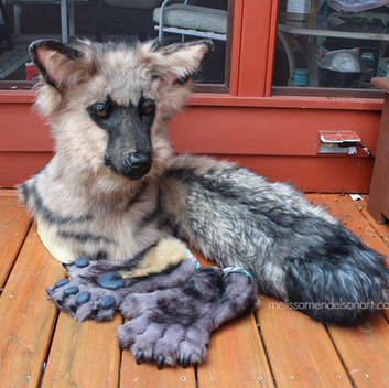 Aardwolf partial small.jpg