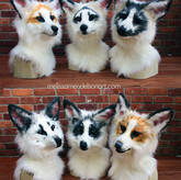 Marble foxes group photo.jpg