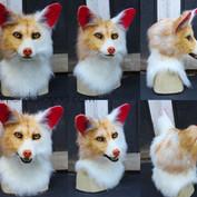 golden fox turnaround small.jpg
