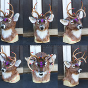 mule deer turnaround small.jpg