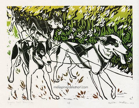 Linoprint - Coyote Run Downline