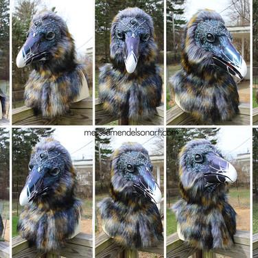3 eyed raven turnaround small.jpg