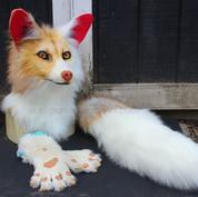 Gold fox partial small.jpg