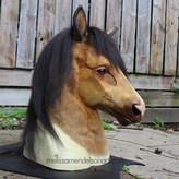 buckskin horse small.jpg