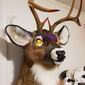 Mule Deer LED eyes