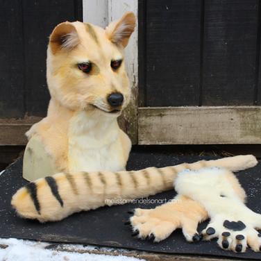 Thylacine partial small.jpg