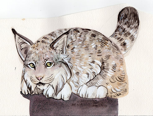 Lynx bag watercolor
