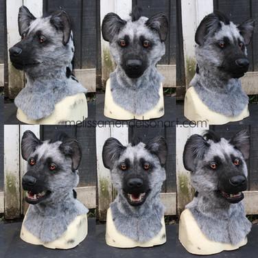 gray hyena turnaround small.jpg