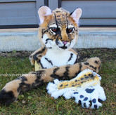 ocelot partial small.jpg
