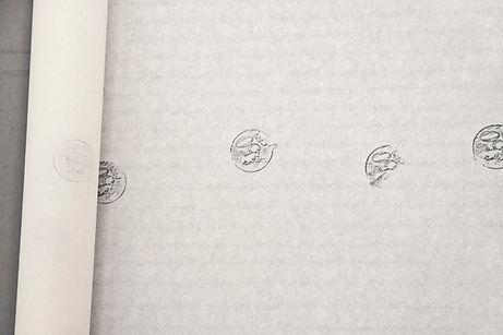 monedas2.jpg