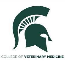 BDC Speaks with MSU College of Veterinary Medicine on an Inclusive Excellence Framework