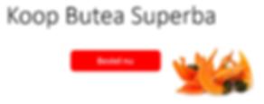Banner Butea Superba NL hor.PNG